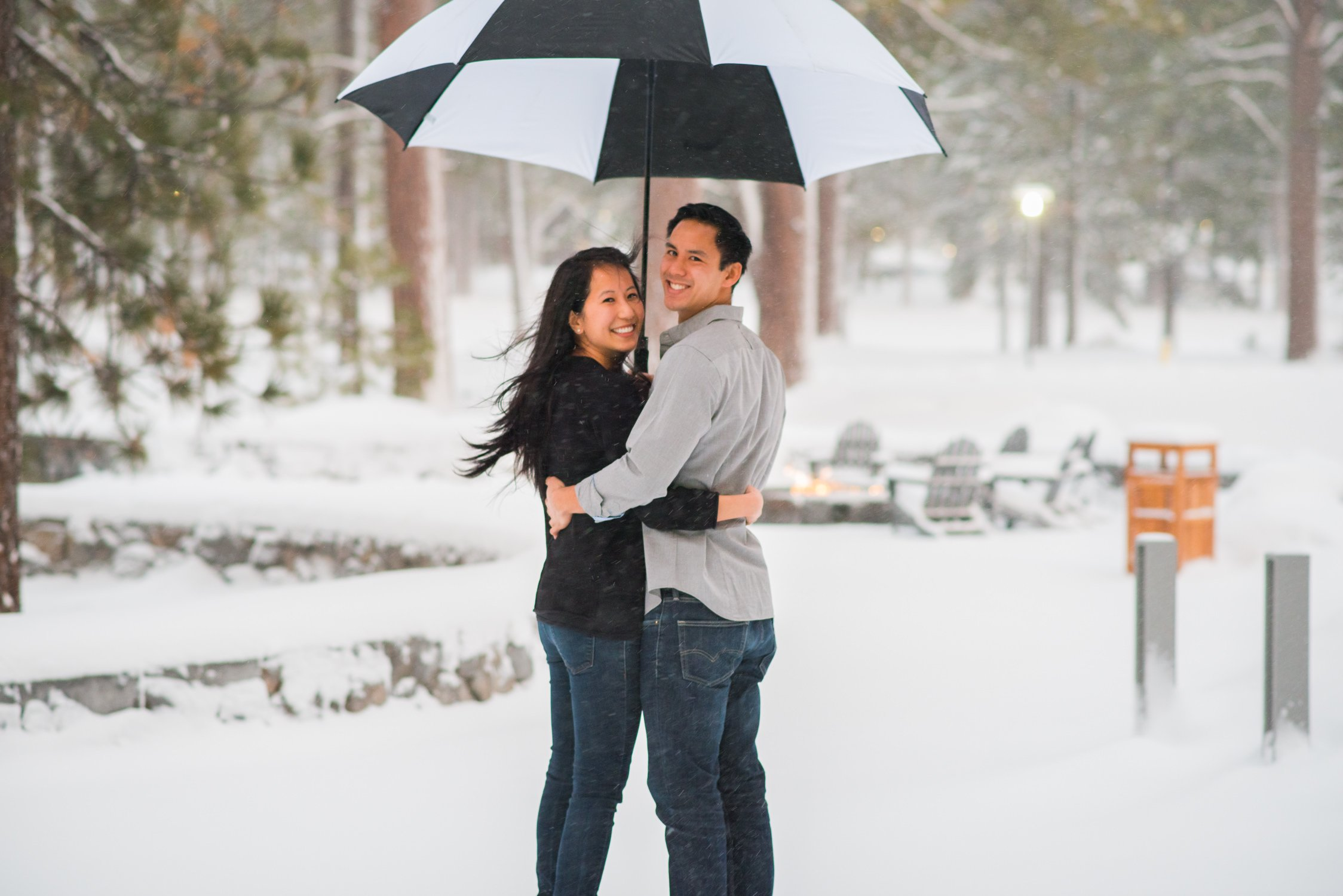 wintry proposal